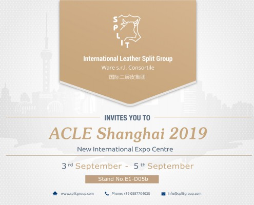 ACLE 2019-card