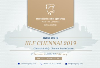 IILF POSTCARD 2019